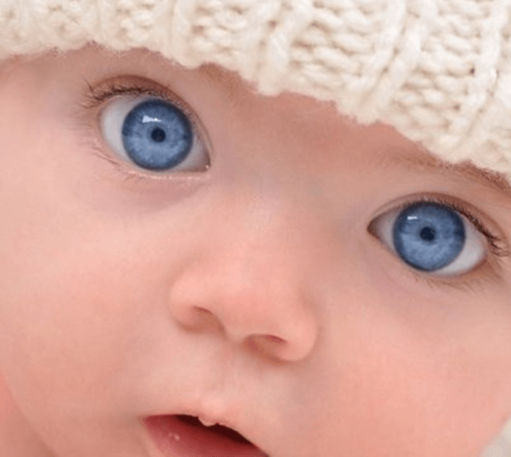 all blue eyed people are related genetic literacy project