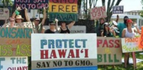 Hawaii counties cannot impose local safety bans on GMOs and pesticides, federal court rules