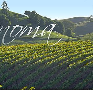 Sonoma VIP Wine tour