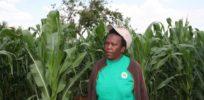 Sophie Mabhena Photo credit Busani Bafana IPS x