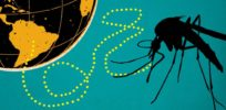 WHO announces that Zika is no longer a public health emergency - it's worse