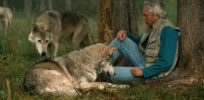 Talking Biotech: Oxford's Greger Larson on how grey wolves evolved to become man's most loyal companion