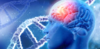 Gaucher, Parkinson diseases both originate from mutations on same gene