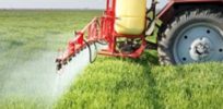 What does electricity have in common with pesticides?