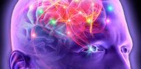 epilepsy e