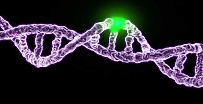 genetic mutation x