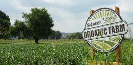 st lukes farm