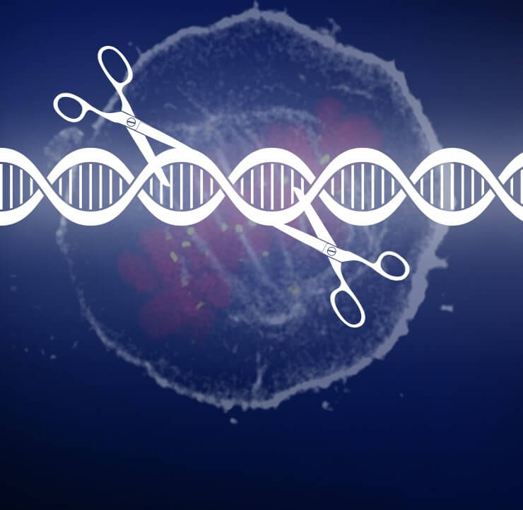CRISPR Cancer HeroArt