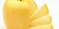 First genetically modified non-browning apples in Midwest stores by February