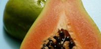 Video GMO story: The near death and rescue of the Hawaiian papaya