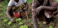 Sustainability activists fear agrochemical, seed company monopolies will damage food security