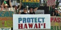 GMO opponents turn to Hawaii legislature following repeal of local pesticide bans
