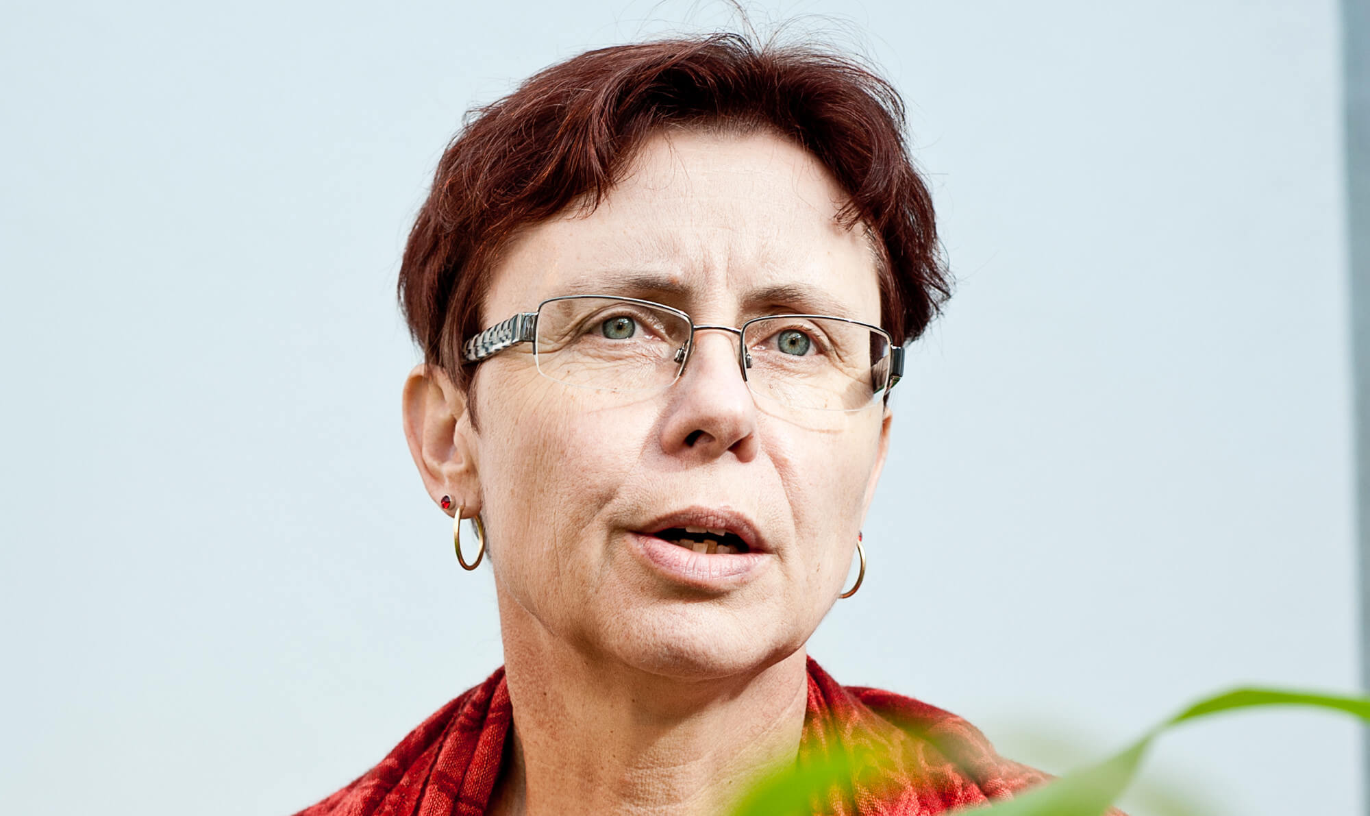 Angelika Hilbeck: Ecologist claims agri-corporations 'stalk' her for claiming GMOs are dangerous