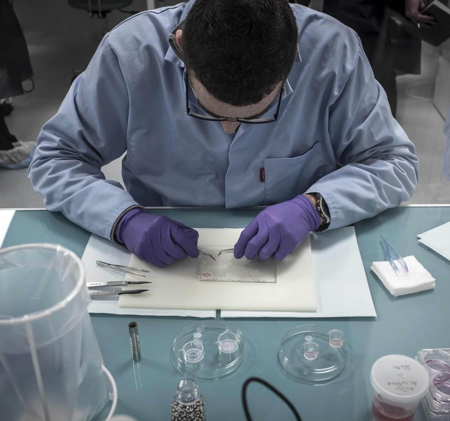 la oe firestein science replication failure