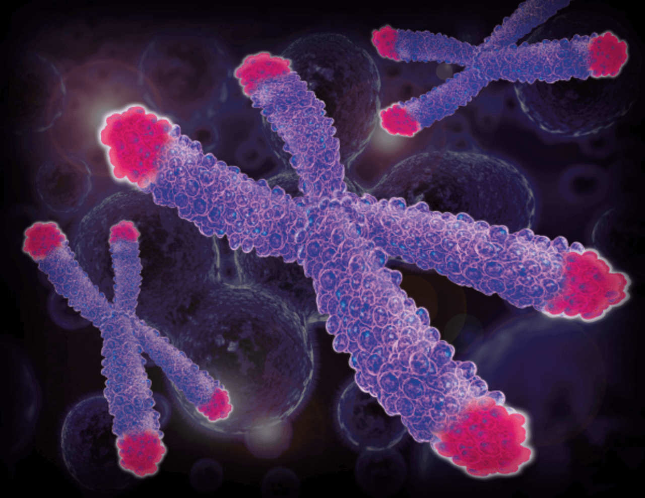 Картинки хромосом смешные