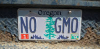 Biotech critics in Oregon look to overturn state's block of local GMO bans