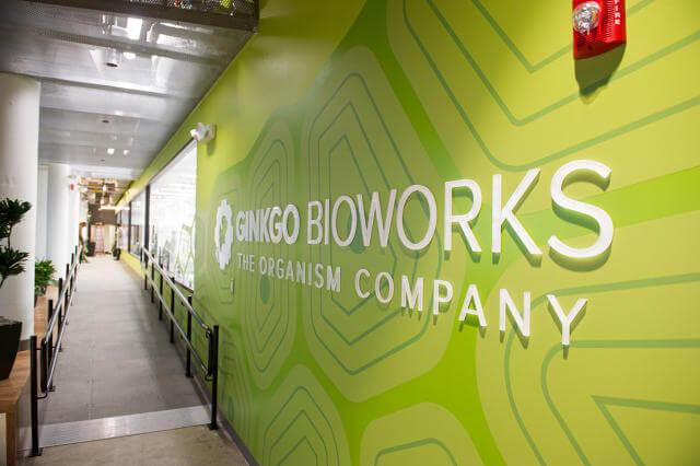 inline i slide inside the biotech startup thats bringing organism design