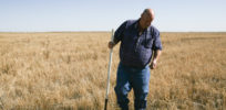 American farm bust: Global competition, low prices, high seed costs push farmers to the edge
