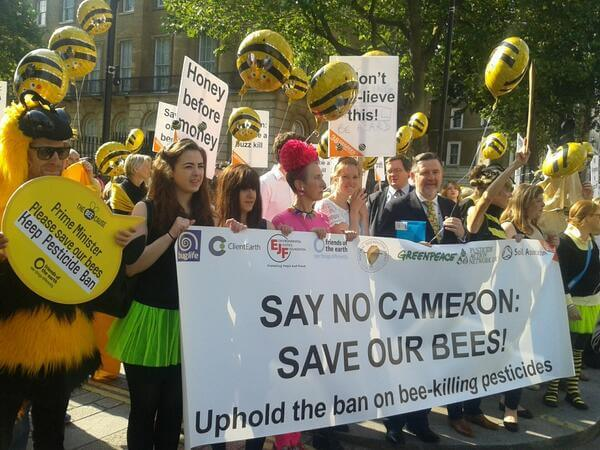 Downing St Bee Protest Jul c FoE