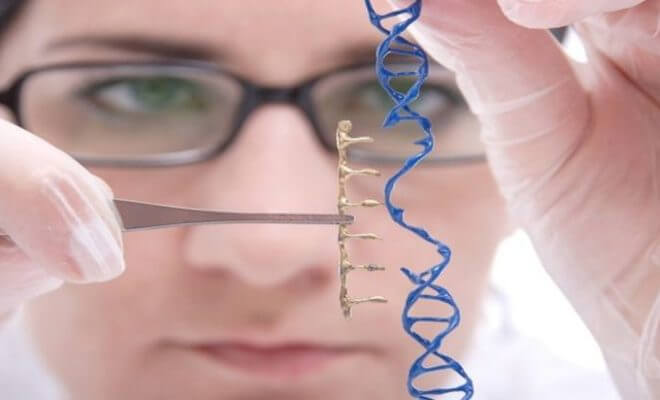 Exploring national security risks related to gene editing