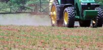 herbicide spraying early Georgia e