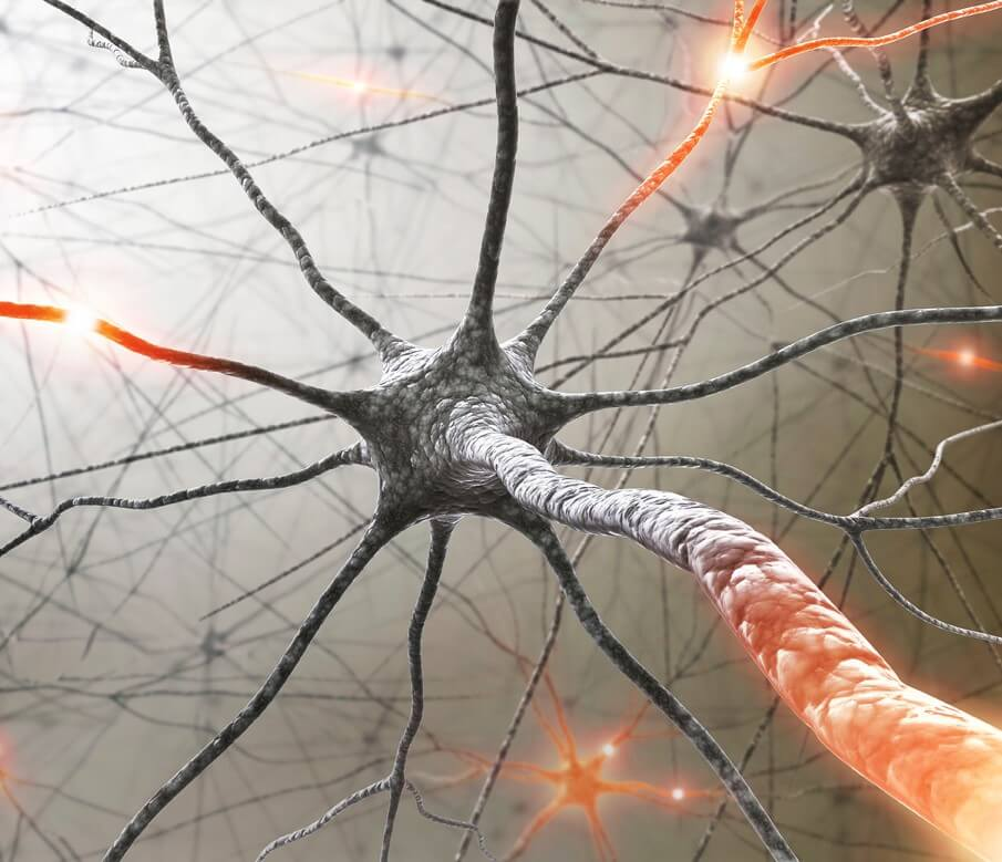 Multiple sclerosis, inflammatory diseases linked to 27 high-protein gene regions