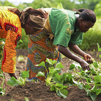 wpid African women farmers e