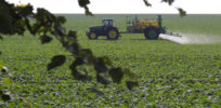 Can farmers reduce pesticide use but maintain expected yields? Study of French farms says yes