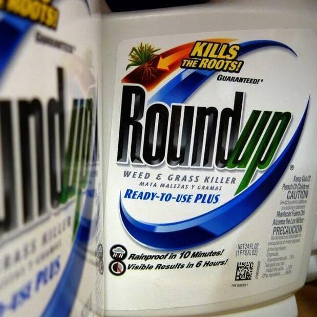 Bayer Monsanto What They Make e