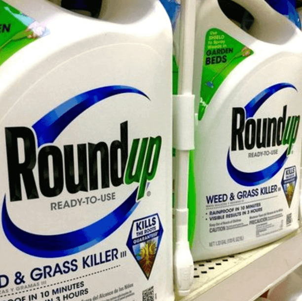 Medical school investigation finds 'no evidence' Monsanto ghostwrote