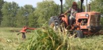 Switchgrass Harvest at Meach Cove Farm e