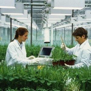 e crop research spl e
