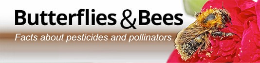 Butterflies and Bees: Facts about pesticides and pollinators