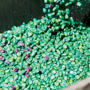 seed treatment saga