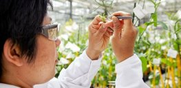 Talking Biotech: As demand for food rises, the world needs more plant scientists