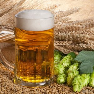barley prices craft beer