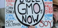 GMO labeling could be top line on Sonny Perdue's menu once confirmed as secretary of agriculture