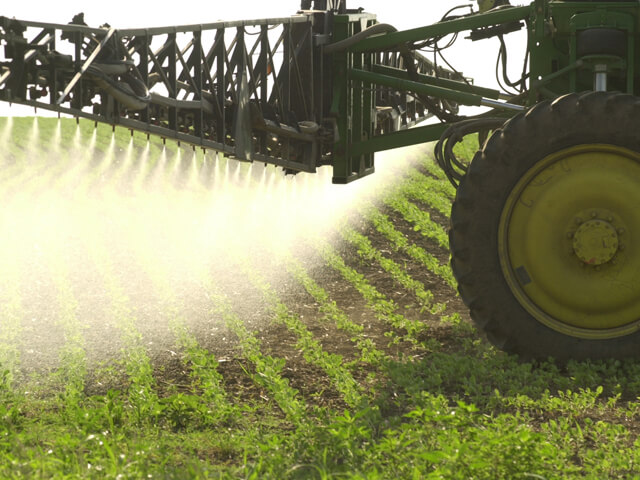 Dicamba fiasco: Are Monsanto's labels too restrictive and
