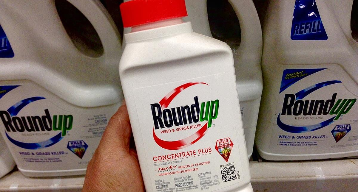 Roundup ban? Glyphosate-free farming would mean higher food prices