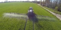 Canada's food regulator finds herbicide glyphosate on 30 percent of samples — But only 1.3 percent above 'acceptable' limit