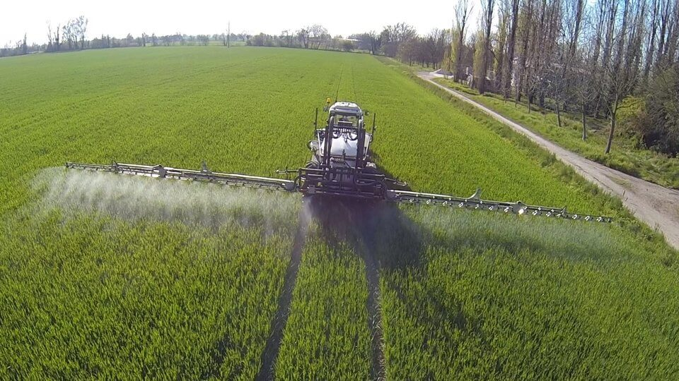 wheat spraying
