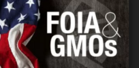 Podcast: Horticulturalist Kevin Folta exposes US Right to Know's smear campaign against biotech scientists