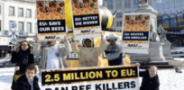 European Commission: Scientists find neonicotinoids don't harm bees, restrictions hurt farmers—but support permanent ban