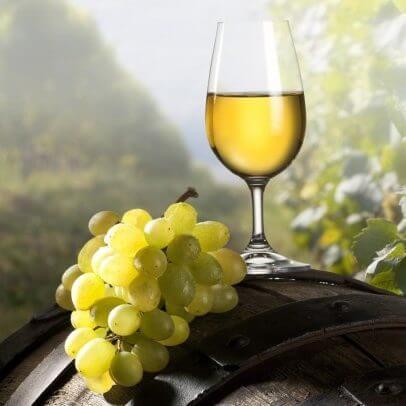 chardonnay white wine x e