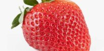 Legal wrangle puts brakes on new strawberry that's 'bigger, brighter and stays sweeter longer'