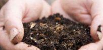 Buried treasure: 'Game-changing' antibiotic found in dirt might protect against resistant killer bacteria