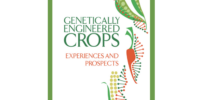 National Academies of Sciences rebuke claim 2016 GMO crops report 'tainted' by conflicts of interest