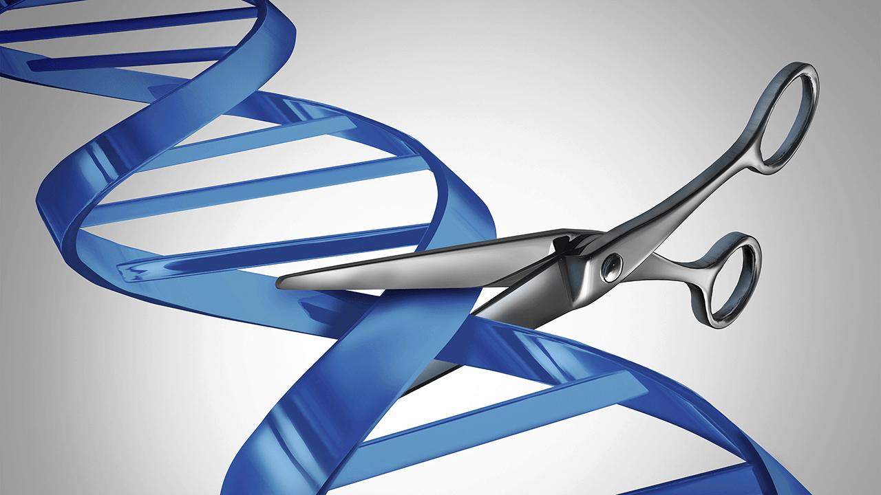 Biotechnology timeline: Humans have manipulated genes since