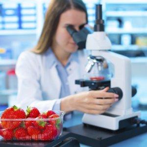 food technology training