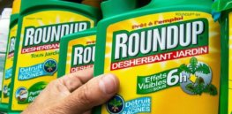 There are literally no more studies we can do to show glyphosate is safe, expert says